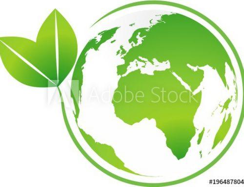 Verpackungen reduzieren, der Umwelt zuliebe